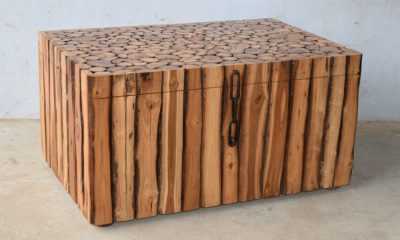 Rich Right Solid Wood Trunk Coffee Table
